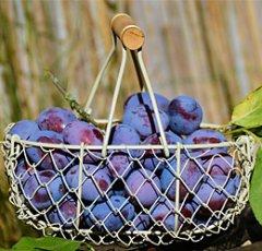 pixabay-plums-1649602.jpg